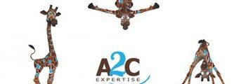 2013 – Création du service communication-marketing et relooking